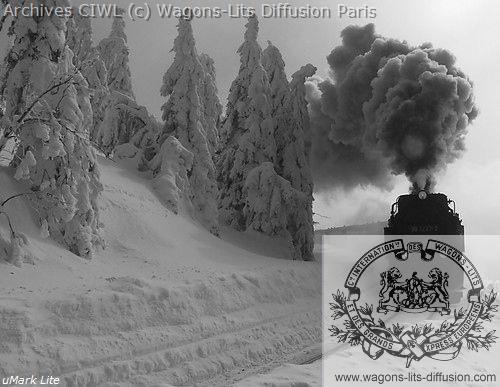 Wl train dans la neige